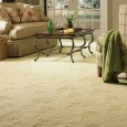 Carpets have been around for a very, very long time. One carpet from the fifth century BC still survives today, and there is evidence that carpets had been made for...